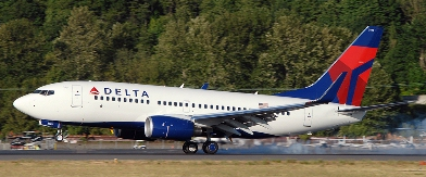 Delta has a number of partner airlines.