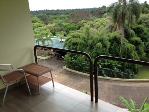My jungle view left something to be desired.