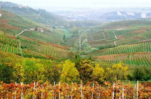Monferrato sits between the Alps and the Riviera.