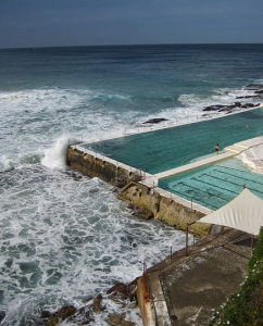Bondi Icebergs Winter Swimming Club