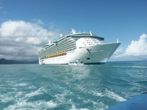 There are many options for a cruise credit card.