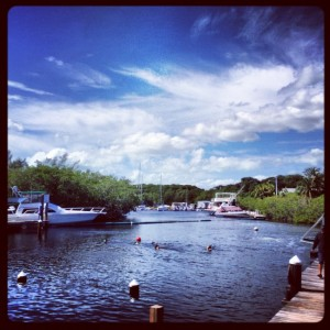 This lagoon wasn't quite as exciting as a reef, but it was fine as I got comfortable being in the open water for the first time