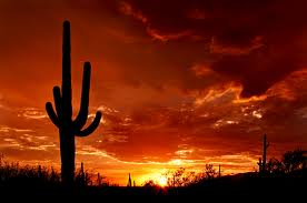 Tucson, Arizona has some of the most beautiful sunsets.