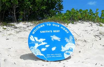 Smith Reef in Turks and Caicos is great for beginners