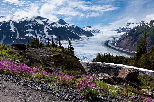 Spectacular scenery makes Alaska a fantastic destination. Image courtesy of Shutterstock.