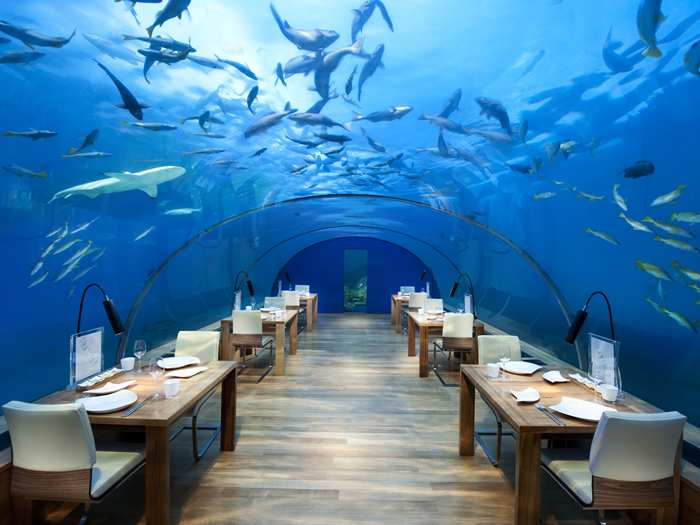 Your two free nights certificates could be worth 190,000 points at the Conrad Maldives, allowing to enjoy a meal in their underwater restaurant!