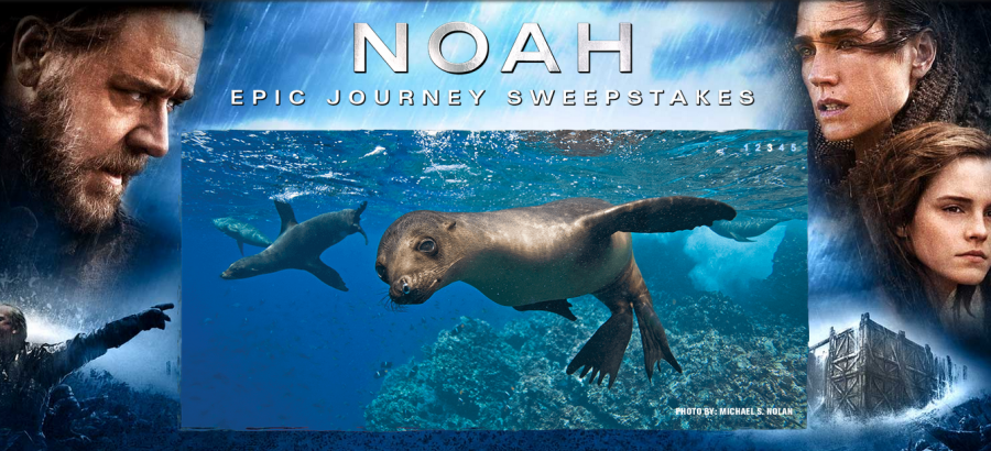 """National Geographic's """"Noah Epic Journey"""" Sweepstakes is giving away a 10-day trip for two to the Galapagos"""