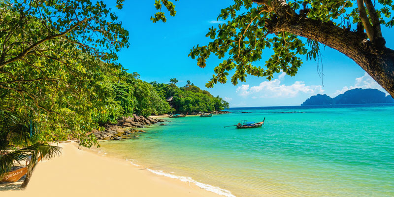 Norwegian will be launching service to Martinique.