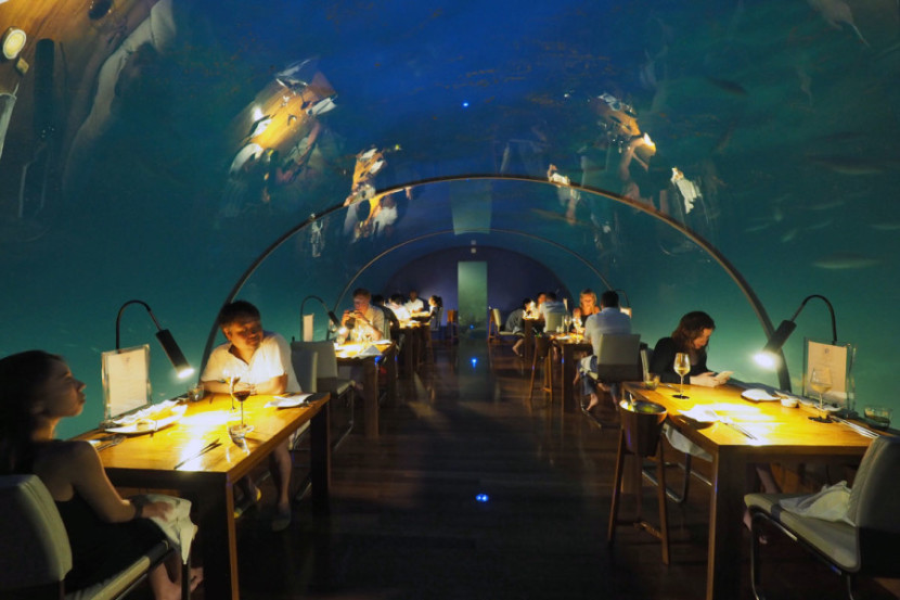 10 photos ithaa undersea restaurant in the maldives