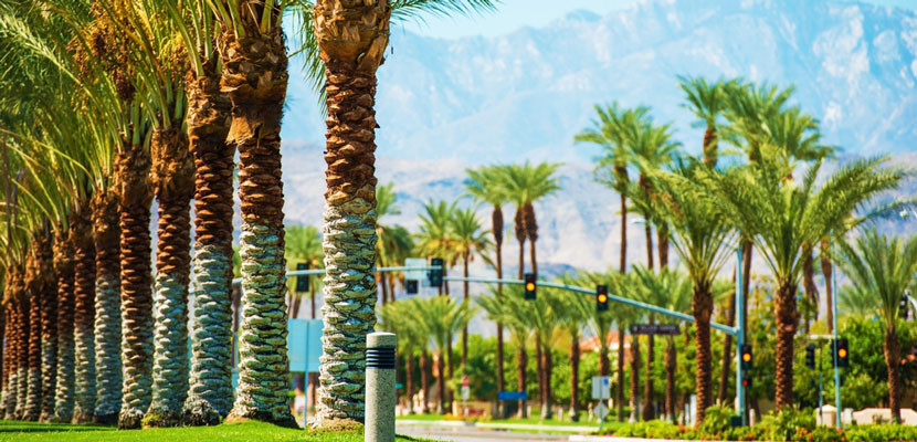 Fly JetBlue to Palm Springs this year.